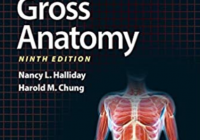 BRS Gross Anatomy 9th Edition PDF Free Download