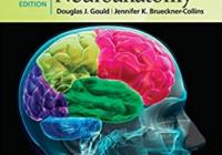 High-Yield Neuroanatomy 5th Edition PDF Free Download
